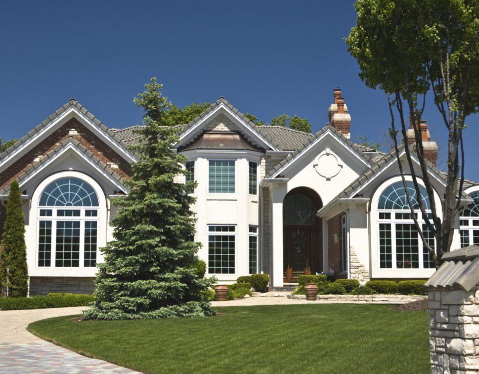 Luxurious Suburban House